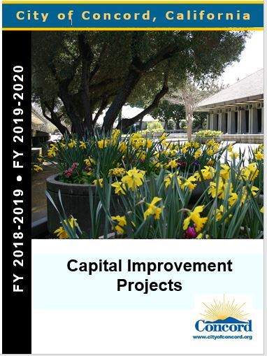 Image of cover of 2018-19 CIP budget report