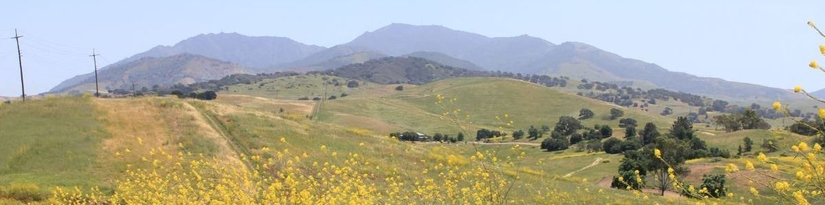 Mt Diablo in distance with fields