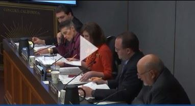 Image of screenshot of Council Meeting