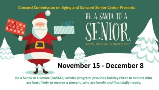 Be a Santa to a Senior flyer